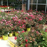 Photo taken at The Home Depot by Jonathan W. on 6/9/2012