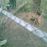 Photo taken at CC Park, DHA by Hasham M. on 3/23/2012