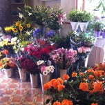 Photo taken at Floristería Brisa by Sanaz A. on 7/21/2012