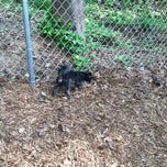 Photo taken at Monroe Place Dog Park by Rico N. on 4/2/2012