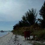 Photo taken at Ted Sperling Park at South Lido Beach by Tina D. on 1/23/2012