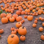Photo taken at Connors Farm by Chandra on 10/15/2011