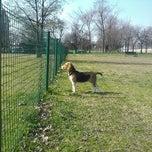 Photo taken at Parco Cani Via Gandhi by Emanuele B. on 6/1/2011