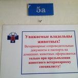 Photo taken at Ветклиника 2й Лихачевский by Artem K. on 3/26/2012