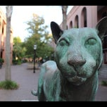 Photo taken at Cougar Mall, College of Charleston by Matches M. on 7/5/2012