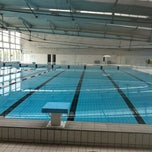 Piscine de viry chatillon for Chatillon piscine
