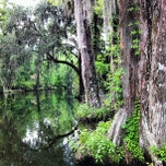 Photo taken at Magnolia Plantation and Gardens by Ashley S. on 5/20/2012