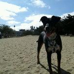 Photo taken at Alameda Dog Park by Jesse E. on 8/6/2012