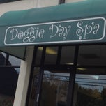 Photo taken at Doggie Day Spa by Heather S. on 4/4/2012