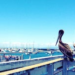 Photo taken at Old Fisherman's Wharf by Lenka V. on 6/24/2012