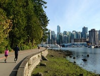 Cover Photo for Lindsay Numata's map collection, Stanley park