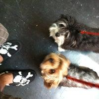 Photo taken at Bark 'N Bake by BIG GUZ™ on 3/3/2012