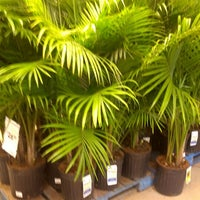 Photo taken at Lowe's Home Improvement by Roy A. on 8/4/2012