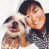 Photo taken at Sonoma-Marin Fairgrounds & Event Center by Kira on 6/20/2014