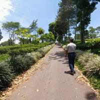 Photo taken at Kebun Teh Wonosari by Ay SiCemutz on 10/16/2016