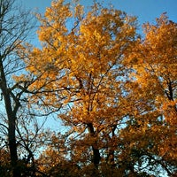 Photo taken at Chickasaw National Recreation Area by whois101 on 11/4/2012