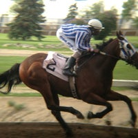Photo taken at The Horses at Northlands Park by Jerry A. on 6/8/2013