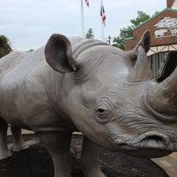 Photo taken at Cincinnati Zoo & Botanical Garden by Peter O. on 5/18/2013