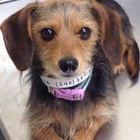 Photo taken at Michigan Humane Society by Jason K. on 7/21/2015