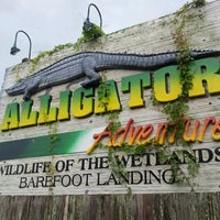 Photo taken at Alligator Adventure by Mike R. on 7/12/2013