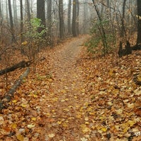 Photo taken at Alapocas Woods Park (Hiking Area) by Terry B. on 11/30/2016