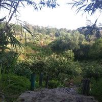 Photo taken at Parque Ecologico Huayamilpas by AlmaD p. on 10/3/2012