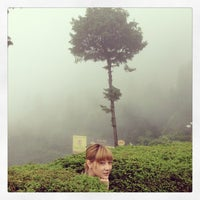 Photo taken at Himalayan Mountaineering Institute by Lady P. on 7/22/2013