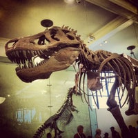 Photo taken at American Museum of Natural History by Dana A. on 7/25/2013