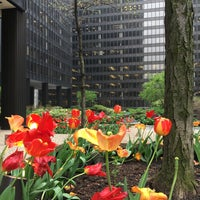 Photo taken at Illinois Center by Cindy R. on 5/11/2016