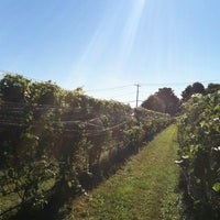 Photo taken at Baiting Hollow Farm Vineyard by Vanessa M. on 10/13/2012