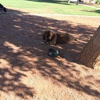 Photo taken at Shawnee Bark Park by Nicole M. on 8/7/2014