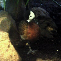 Photo taken at Bird House by Glenn L. on 11/16/2012