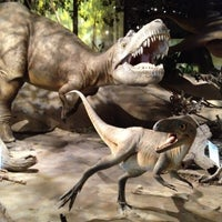 Photo taken at Royal Tyrrell Museum of Paleontology by Shane H. on 6/9/2012