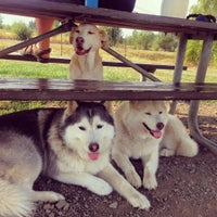Photo taken at Potso Dog Park by Mark M. on 8/2/2015