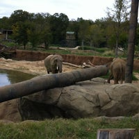 Photo taken at Dallas Zoo by Carl S. on 10/7/2012