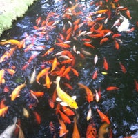 Photo taken at Byodo-In Temple by Kathleen S. on 11/25/2012