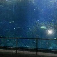 Photo taken at Journey to Atlantis by Will Klein T. on 2/9/2013