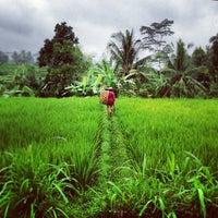 Photo taken at Bali by Jocelyn L. on 7/20/2013