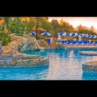 Photo taken at diverhotel Tenerife Spa&Garden 4* by Playa Senator Hoteles on 10/30/2013