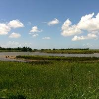 Photo taken at Parc Ornitologique du Teich by Sylvain P. on 6/4/2014