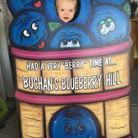 Photo taken at Buchan's Blueberry Hill by Sarah R. on 8/8/2016