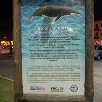 Photo taken at Ossada Baleia Jubarte by Chaval . on 9/13/2014