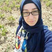Photo taken at GELİNGÜLLÜ KÖYÜ ( YOZGAT ) by Ahu 💙💛 Ö. on 5/15/2016