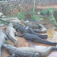 Photo taken at Crocodile Sanctuary by ARIAN A. on 3/28/2016