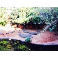 Photo taken at Crocodile Sanctuary by 🔻SHIVA ᴱˢᴹ🔻 on 9/20/2016