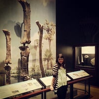 Photo taken at Museum of the Rockies by Ricky C. on 6/19/2013