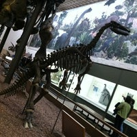 Photo taken at Peabody Museum of Natural History by Rosa C. on 1/27/2013