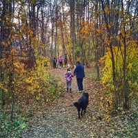 Photo taken at Mill Woods Dog Park by Andy H. on 10/11/2014