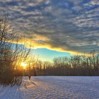 Photo taken at Mill Woods Dog Park by Andy H. on 1/18/2015