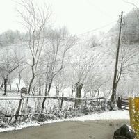 Photo taken at Göl Ormanı by Sena Ö. on 12/30/2015